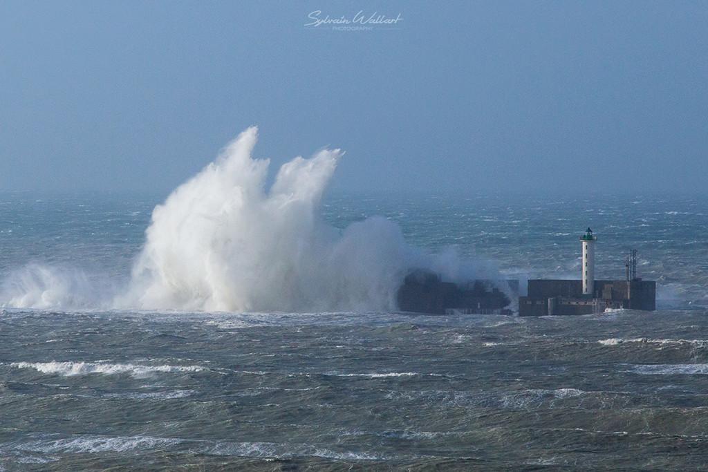 Journée au top ! Tempête sur la côte Img_4915