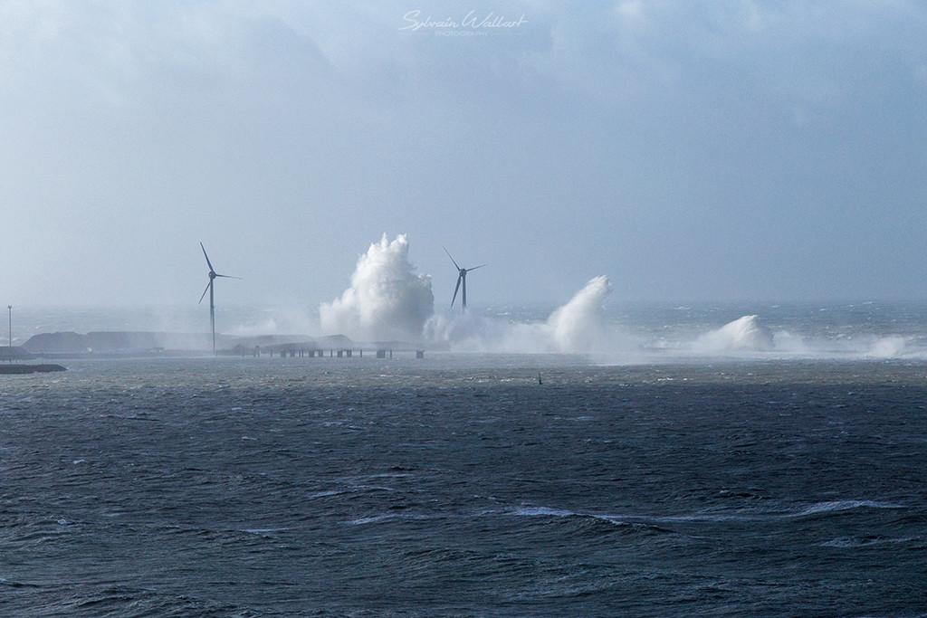 Journée au top ! Tempête sur la côte Img_4916