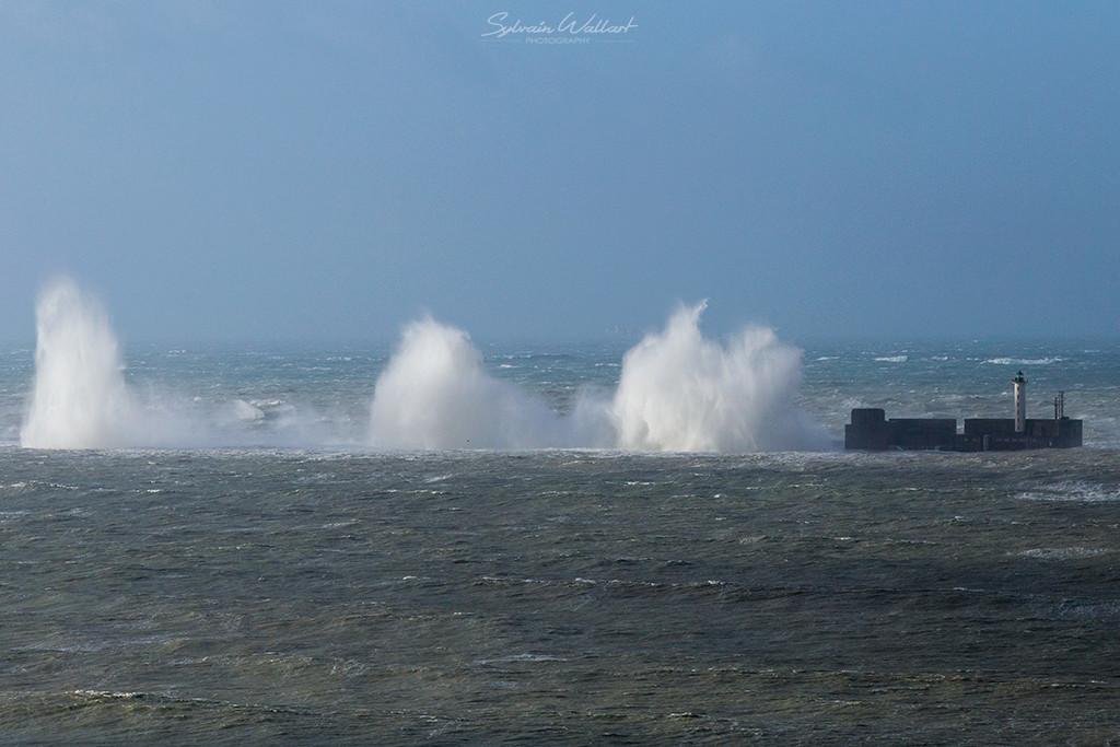 Journée au top ! Tempête sur la côte Img_4917