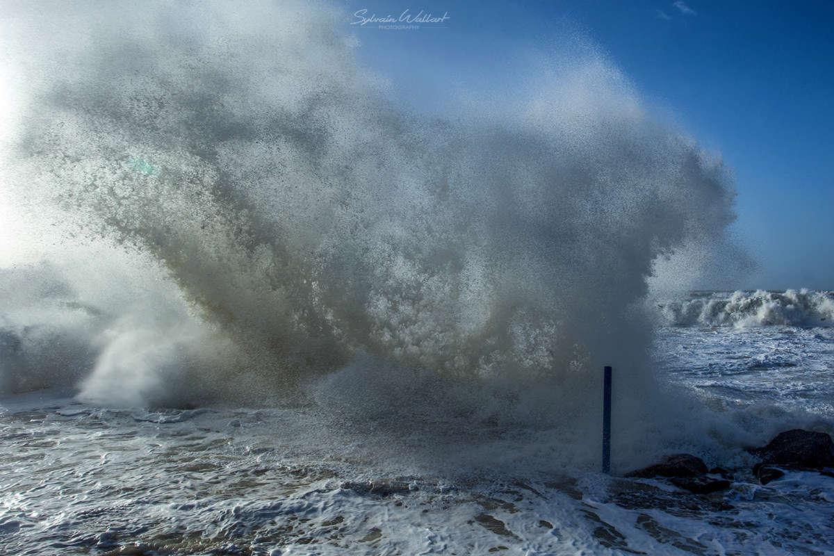 Journée au top ! Tempête sur la côte Img_5017
