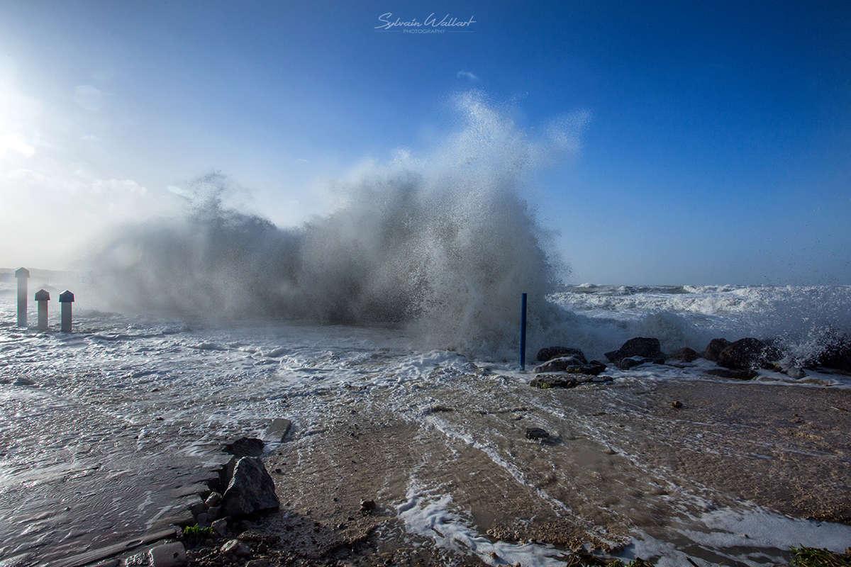 Journée au top ! Tempête sur la côte Img_5019