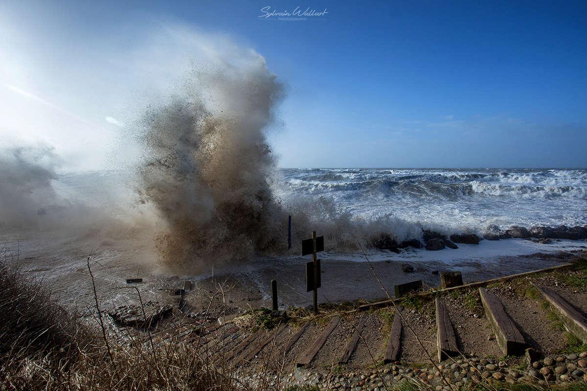 Journée au top ! Tempête sur la côte Img_5211