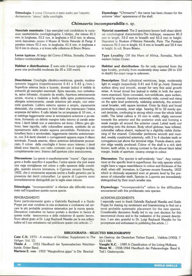 Sphaerocypraea incomparabilis - (Briano, 1993) B310