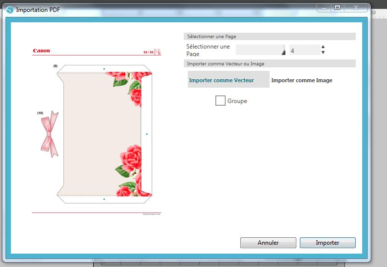 Designer Edition - Importation PDF  Silhou10