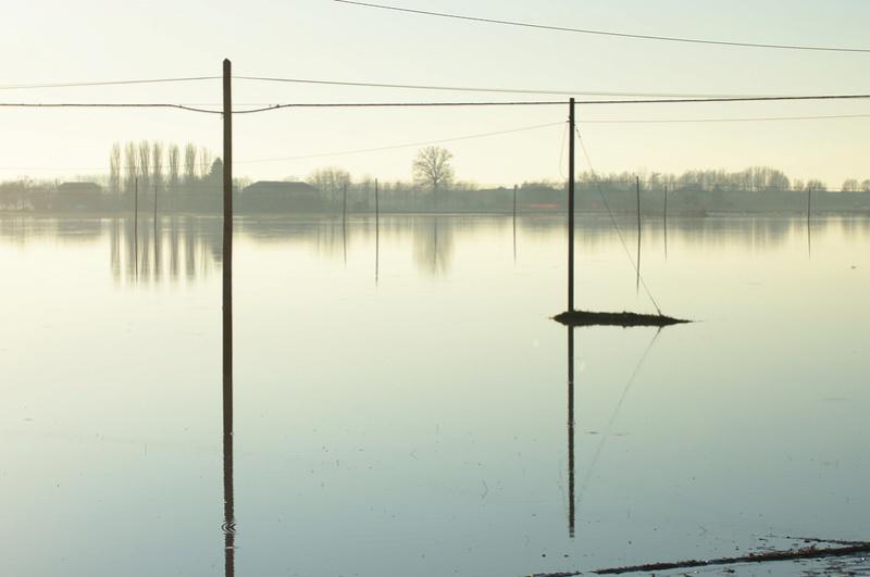Inondazione Bassa Reggiana Dsc_8612