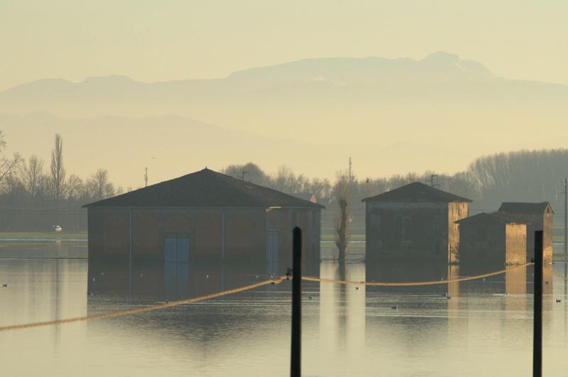Inondazione Bassa Reggiana Dsc_8614