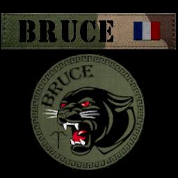 Ecussons CPARES Bruce10