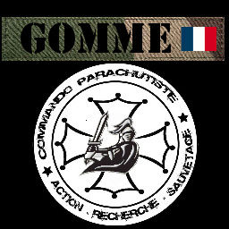 Ecussons CPARES Gomme_10