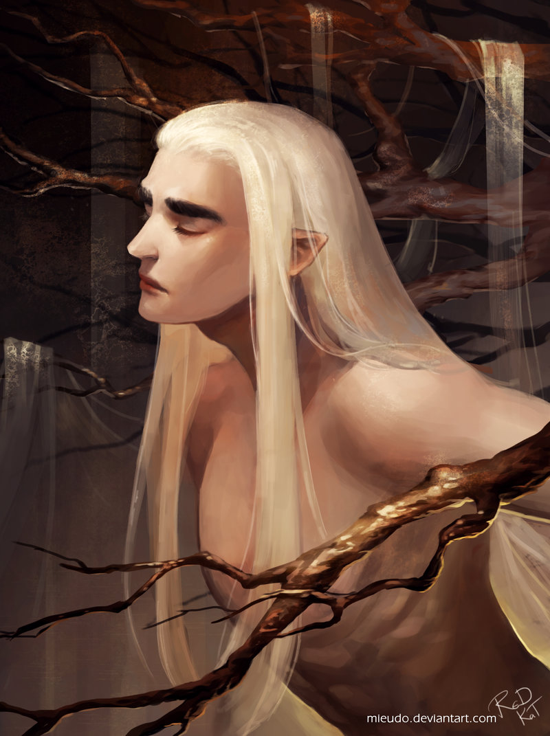 The Forest of Shadows Thrand10