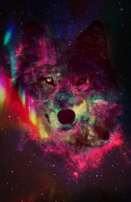 LSD Mirkwood Wallpa11