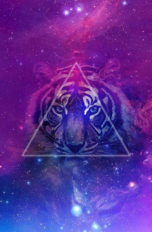 LSD Mirkwood Wallpa19