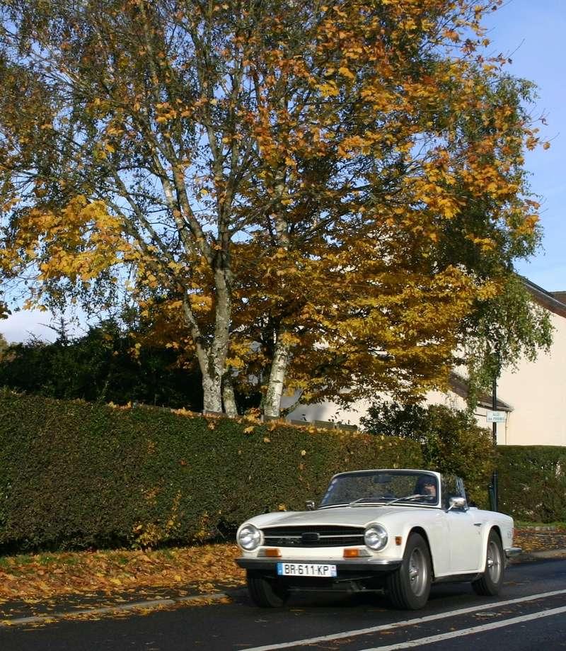 109ème Rendez-Vous de la Reine - Rambouillet le 19 novembre 2017 - Page 3 Img_1690