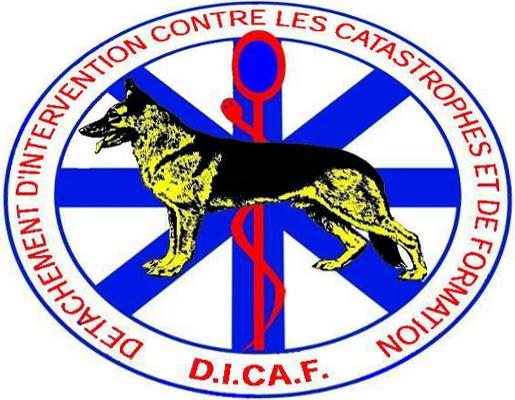 D.I.C.A.F. Détachement d'Intervention contre les Catastrophes & de Formation Logo17