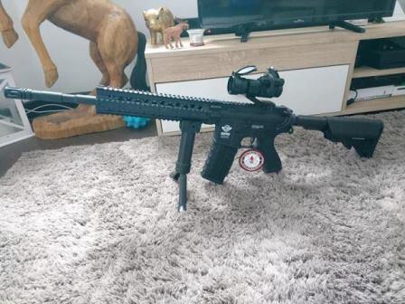 Sharpounet M16gg13