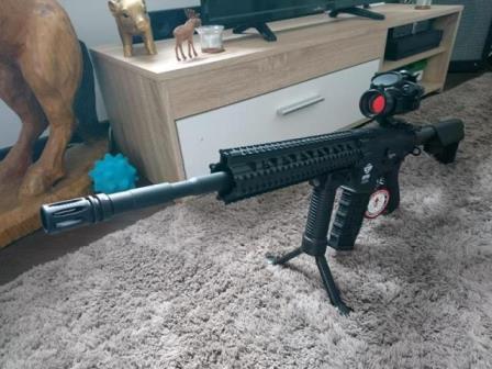 Sharpounet M16gg213