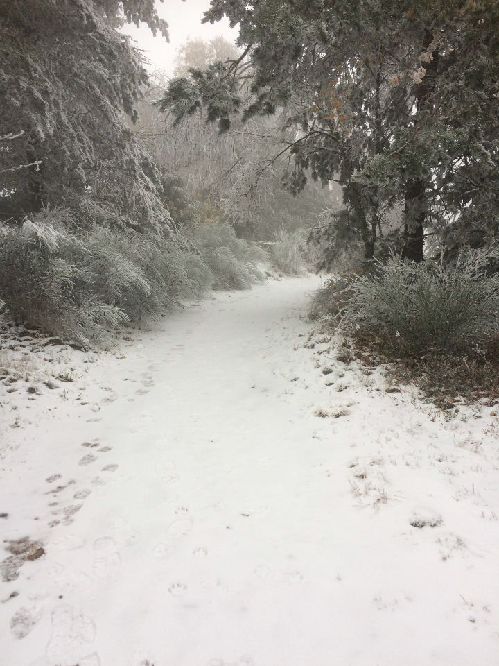 1ere sur neige Img_0712