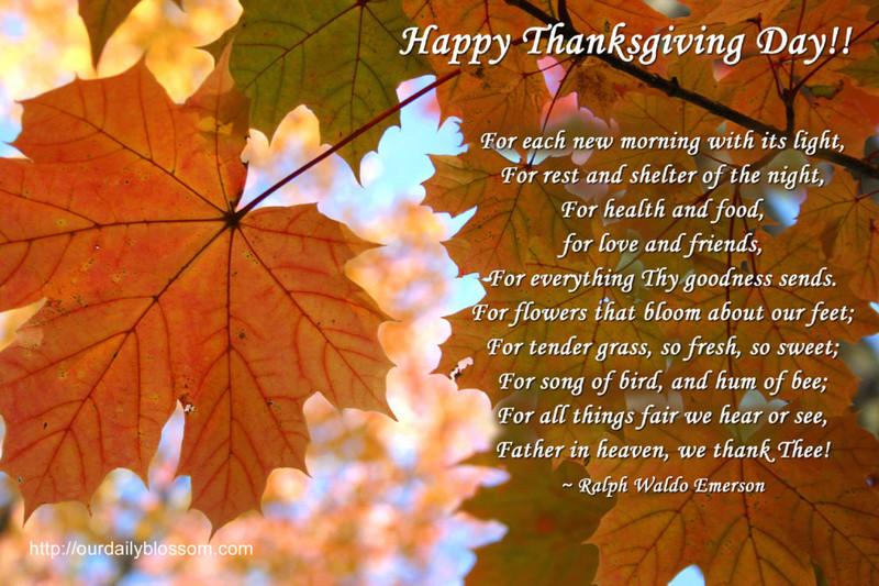 Happy Thanksgiving  Happy-10