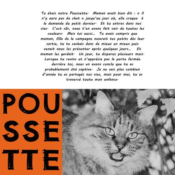 2018-03 / Challenge invités / du noir et blanc ou presque - Page 2 Pousse11
