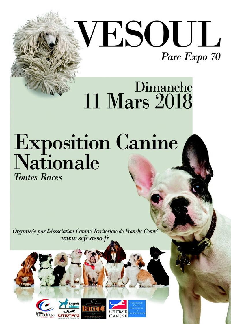 Exposition Canine de Vesoul - 11 mars 2018 Illust10