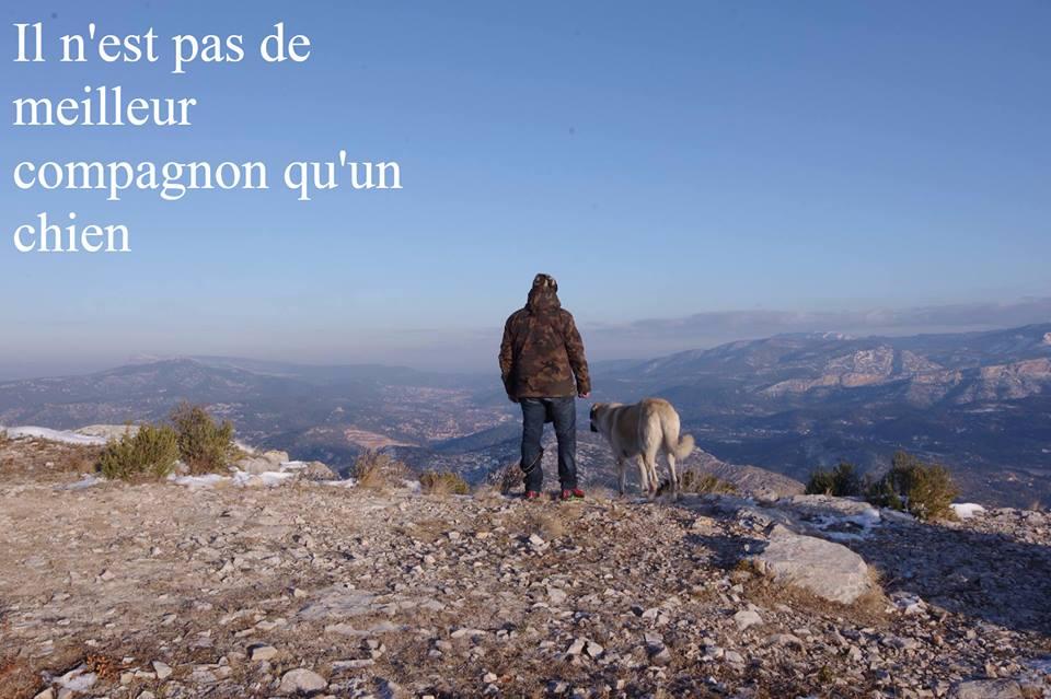 Jolan berger d'anatolie - Page 21 Ggggg10