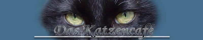 Das Katzencafé