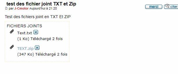 Disparition des fichiers joint TXT et fichier Zip  Captur29