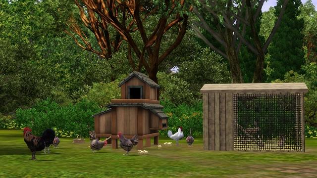 Galerie de Ptitemu : quelques maisons. - Page 25 Poules10