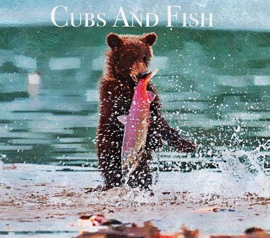 Aménagement d'Étape By Cubs And Fish Img_4711