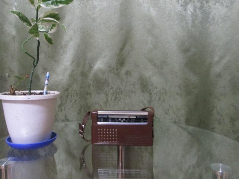 Бытовые радиоприёмники СССР Img_0515