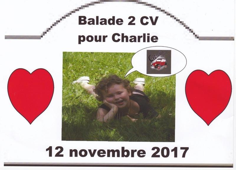 Balade pour Charlie (petite fille sourde) le 12 novembre prochain !!! Img_2010