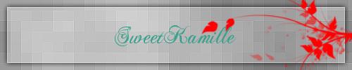 Présentation SweetKamille Image11