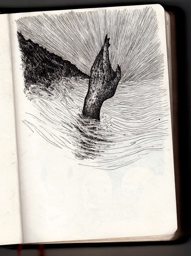 Galerie de Bearest - Page 10 Drawn10