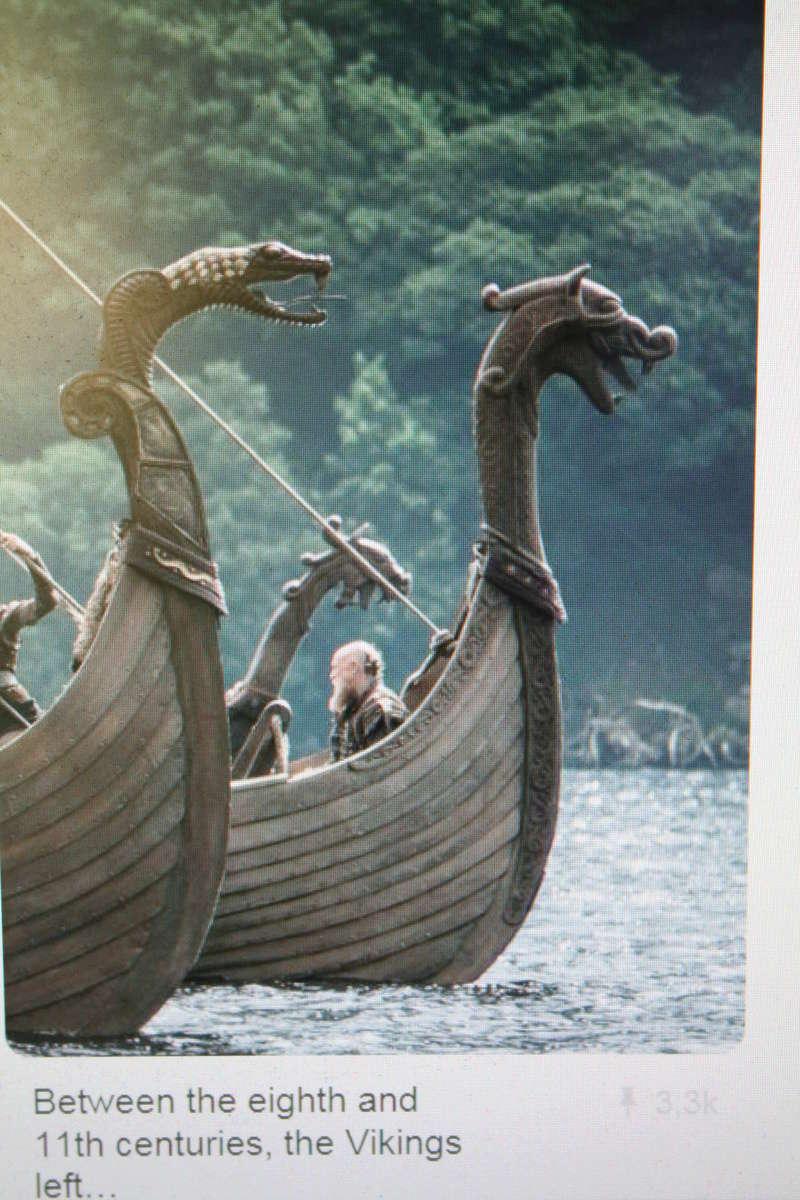 Saga Vikings          Sous le regard d'Odin Img_0911