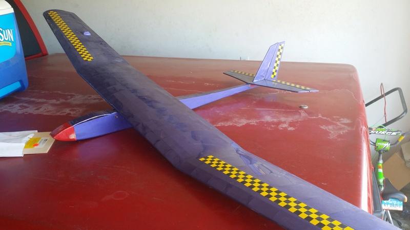 Multi engine Cox powered glider 20161111