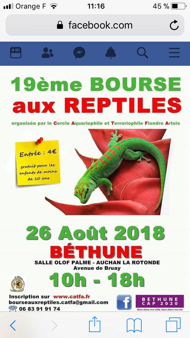 Bourse de Béthune 26 août 2018   14cce310