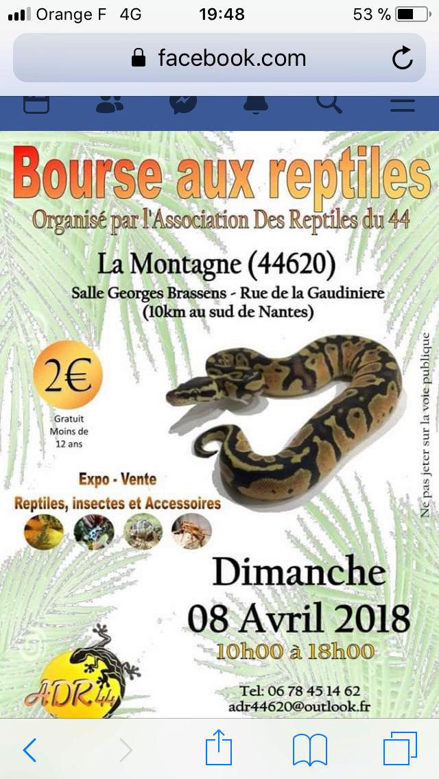 Bourse La Montagne ( Nantes ) le 8 avril 2018 2f43bd10