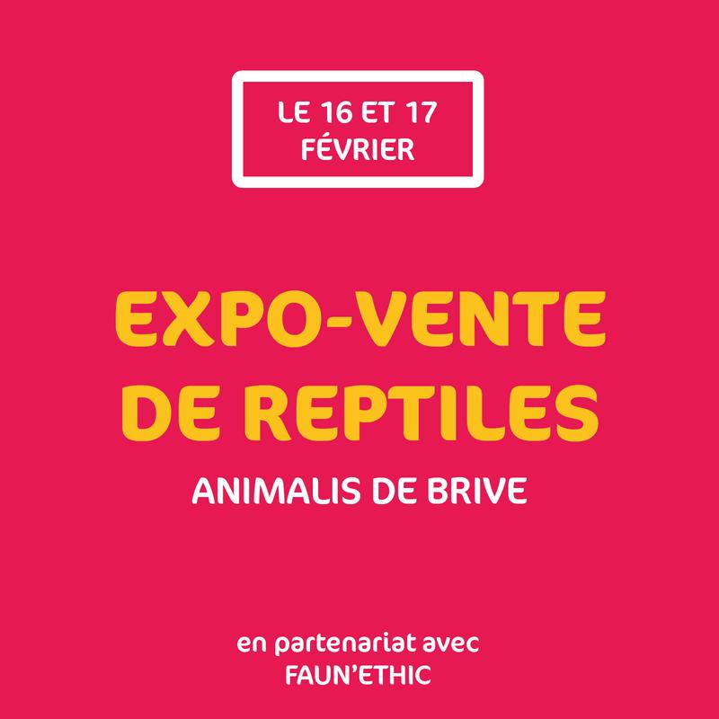 EXPO VENTE BRIVE 16 et 17 février 2018 Brive10