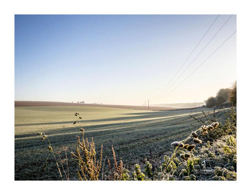 Par un matin d'hiver Pb070810