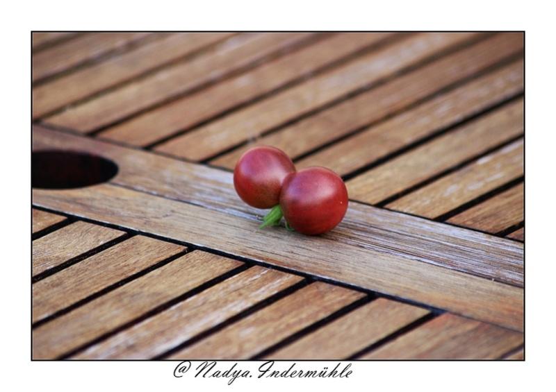 La tomate Cadrim16