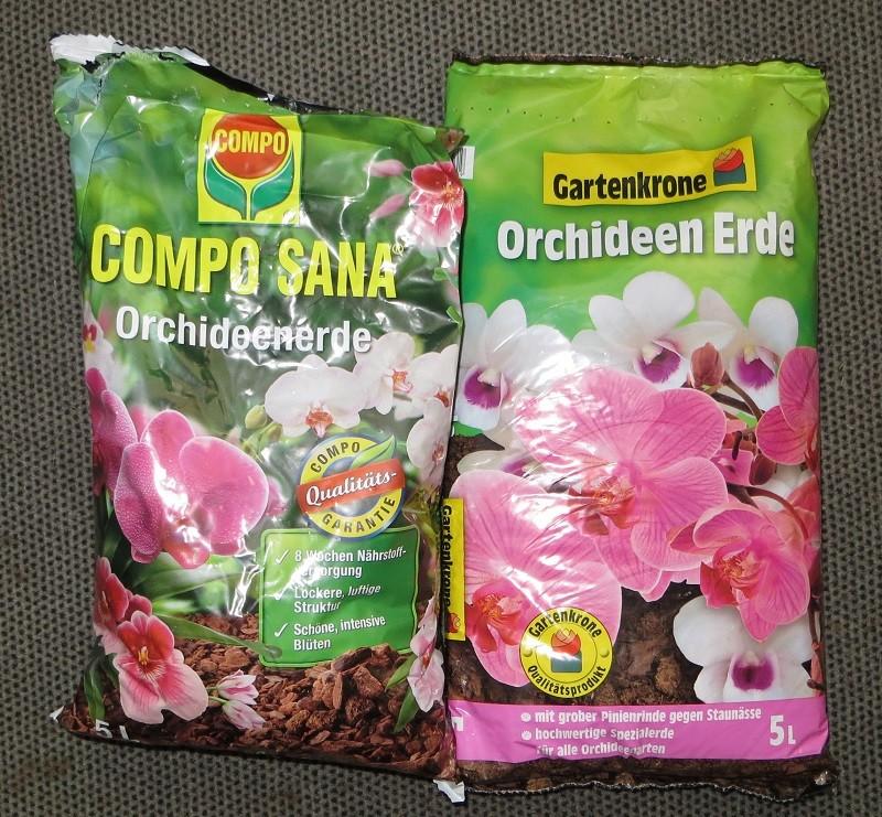 Orchideen 3 (fortlaufende Seiten 300 bis 400) - Seite 20 Orchi-10