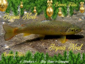 Joyeuses fêtes a tous Fario-10