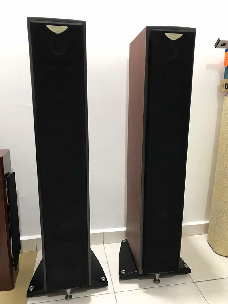 Triangle Antal EX Speakers (Made in France Pair). Img-2017