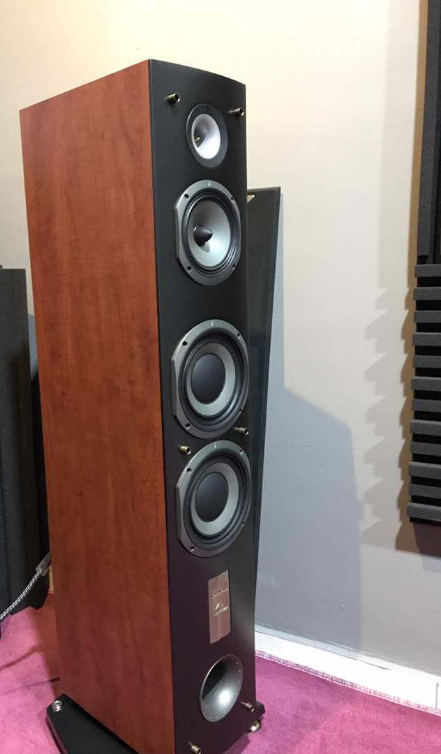 Triangle Antal EX Speakers (Made in France Pair). Img-2019