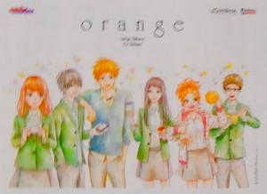 La Collection de Serenity Orange10