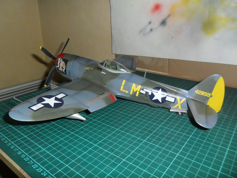 P-47M Thunderbolt du 62Sq du 56th Group  - Page 3 Sam_2121