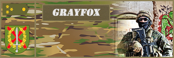 Banner Clan Falcon Grayfo10