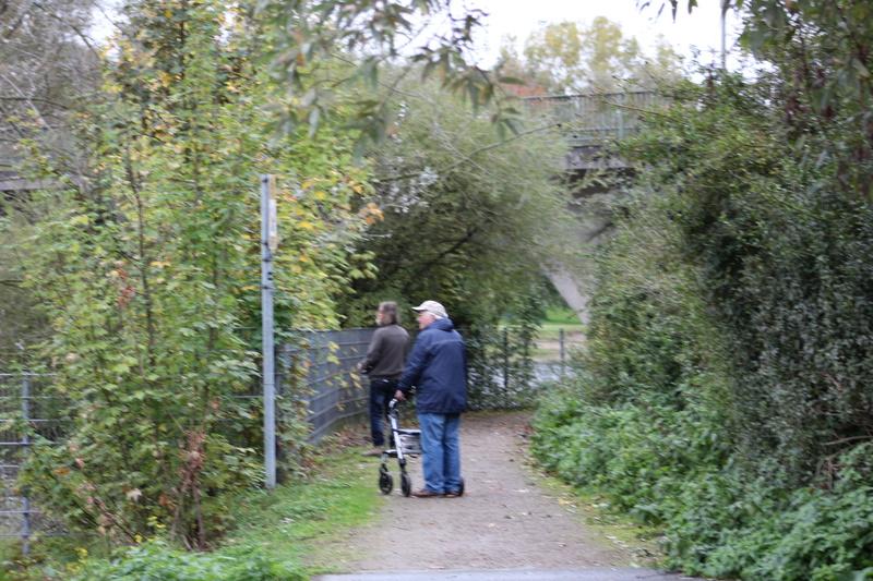37 éme régate au lac fuhlinger prêt de Cologne Img_0143