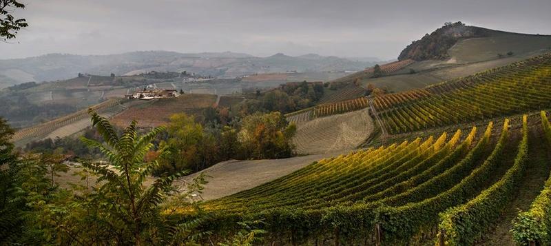 Alba ( Italie ) 14925311