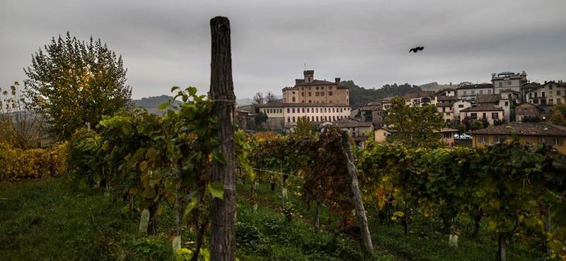 Alba ( Italie ) 14937311