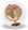 VOTES - Les petits globes-trotteurs   Badge-11